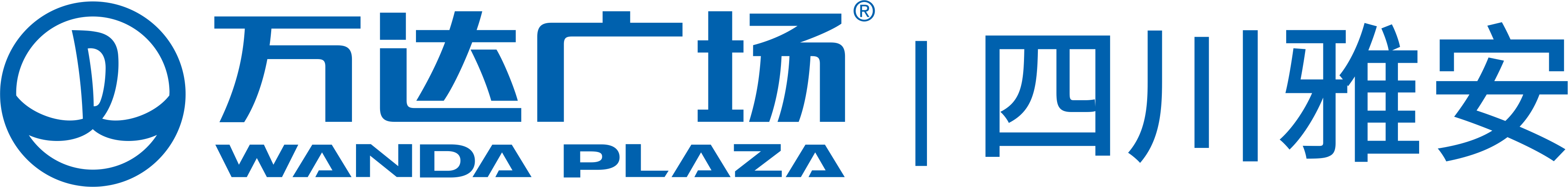 雅安万达广场商业管理有限公司