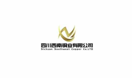 四川西南铜业有限公司